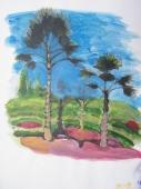 color sketech 3